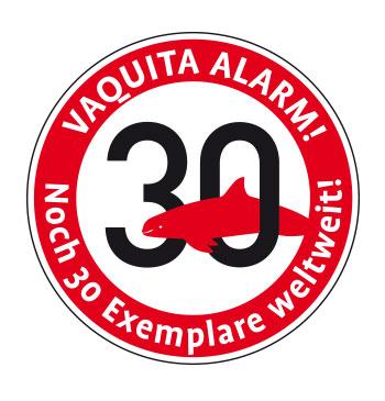 Vaquita