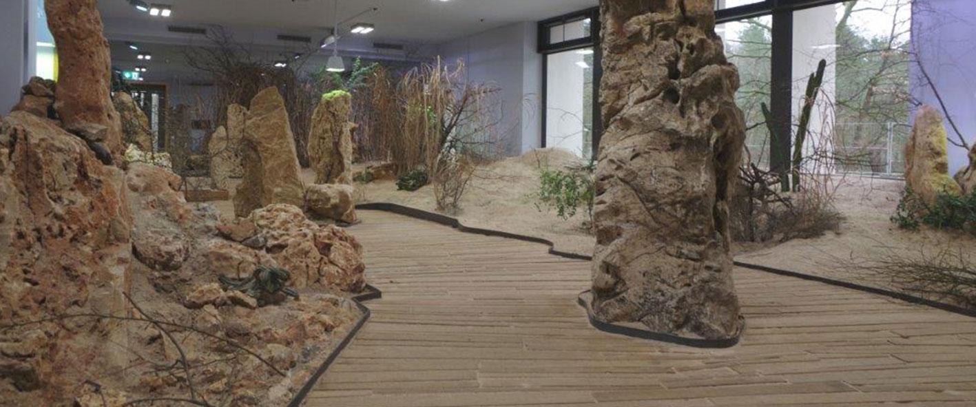 Baustelle Wüstenhaus